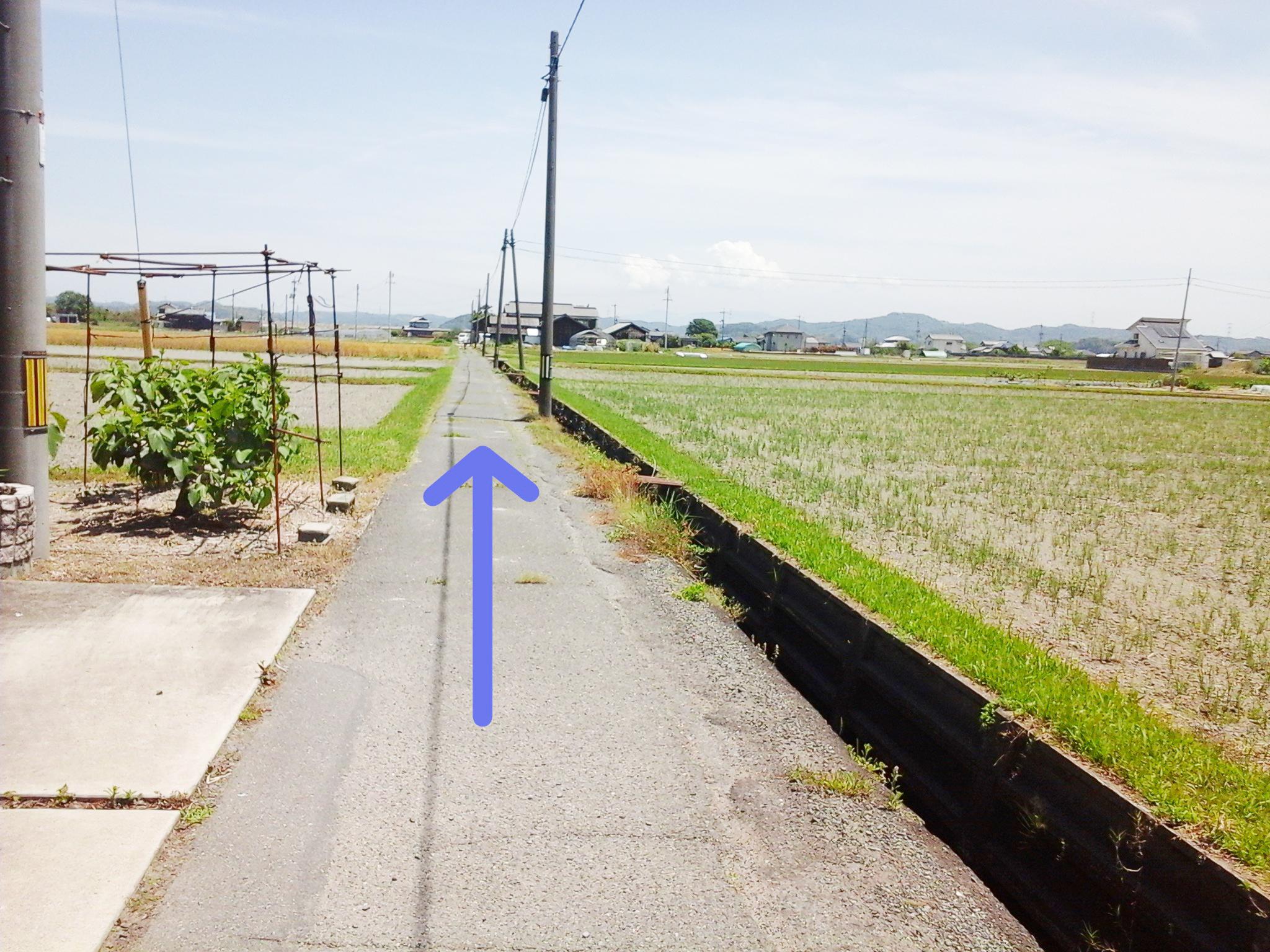 漱石ロード 道順3