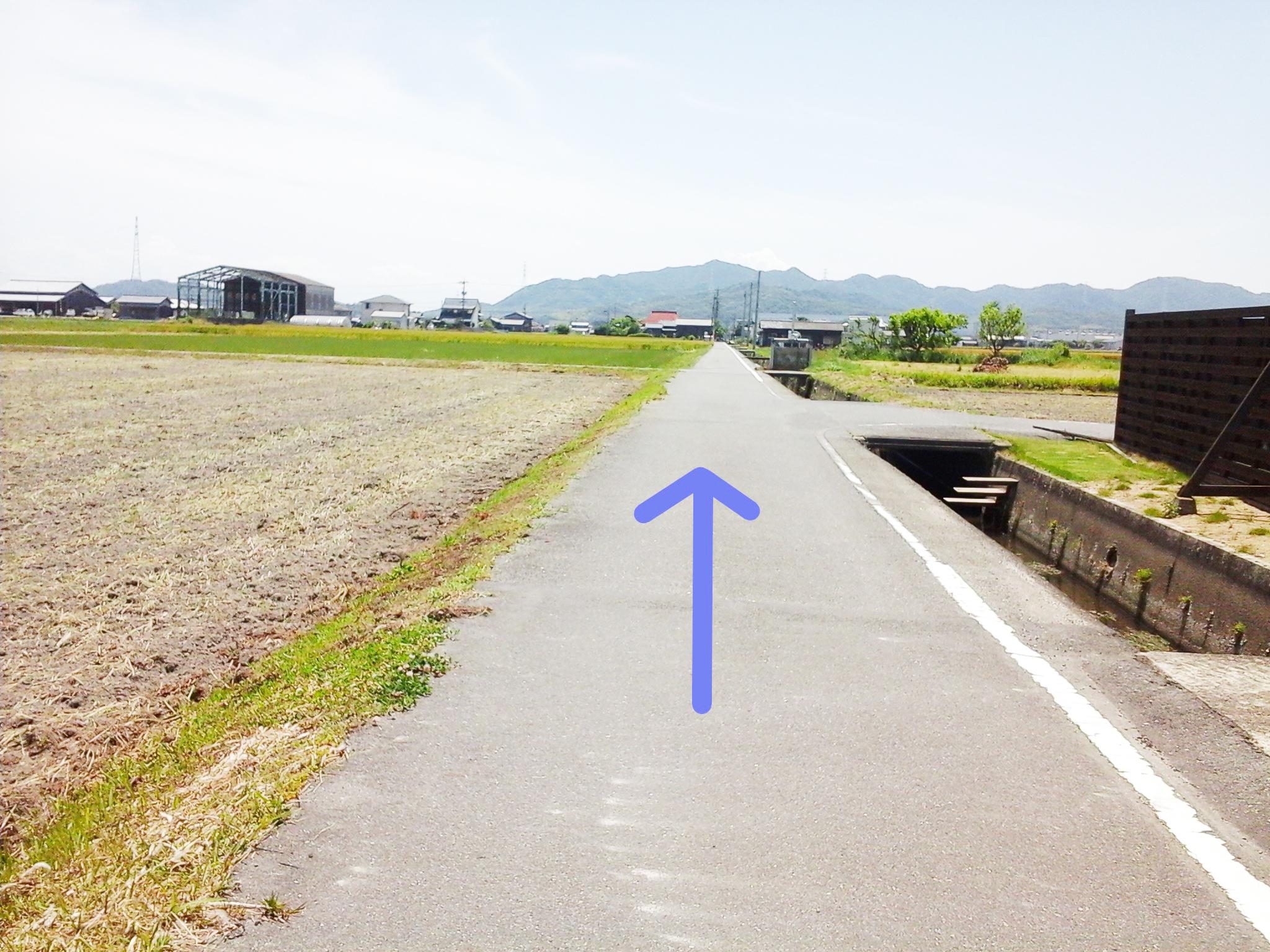 漱石ロード 道順5