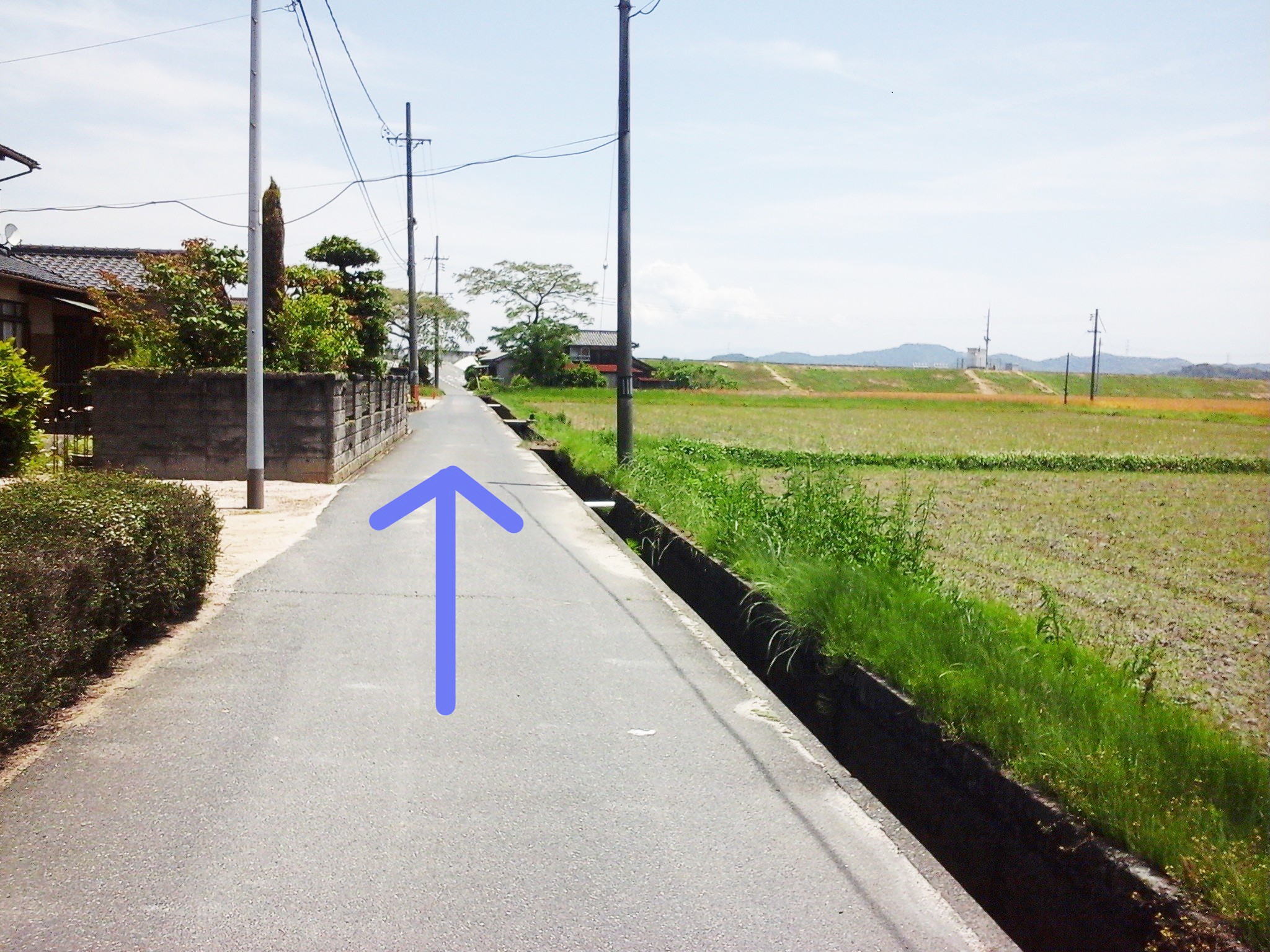 漱石ロード 道順7