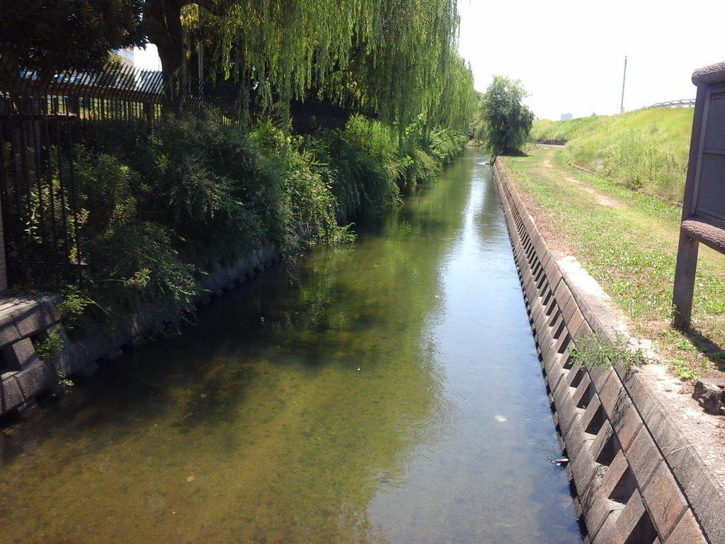 旭東浄水場用水1