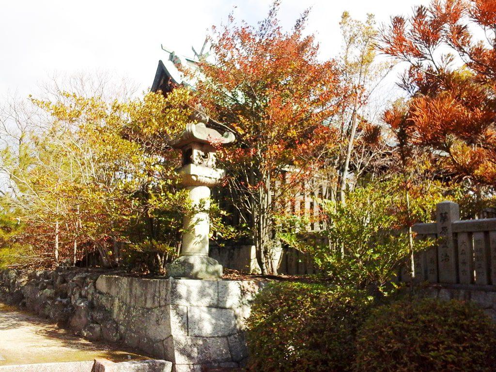 木々に囲まれた本殿